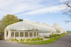 Invernadero en los jardines botánicos nacionales Imagenes de archivo