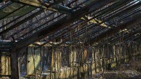 Invernadero viejo abandonado Imágenes de archivo libres de regalías