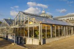 Invernaderos del jardín botánico en Copenhague Foto de archivo libre de regalías