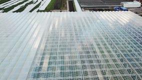 Invernaderos grandes Cultivo orgánico de verduras naturales y frescas Suiza almacen de metraje de vídeo