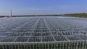 Invernaderos para las verduras durante el día, visión aérea, cámara móvil de la mosca metrajes