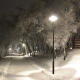 Invernale allontani Fotografie Stock