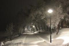 Invernale allontani Fotografia Stock Libera da Diritti