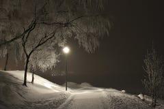 Invernale allontani Fotografie Stock Libere da Diritti