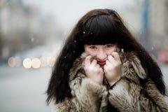 In inverno Immagini Stock