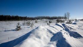 Inverno Fotografia Stock Libera da Diritti