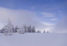 Inverno Imagens de Stock