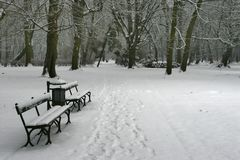 Inverno 36 Imagens de Stock
