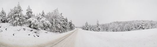 Inverno Fotos de Stock Royalty Free
