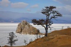 Inverno. Imagens de Stock