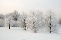 Inverno Immagine Stock Libera da Diritti