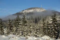 Inverno, Fotografie Stock