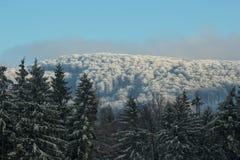 Inverno, Fotografia Stock