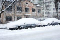 Inverno. Fotos de Stock