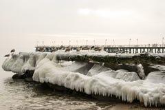 Inverno Foto de Stock Royalty Free