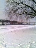 Inverno Immagini Stock