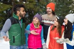 Inverno all'aperto di camminata di Forest Happy Smiling Young Friends della neve del gruppo della gente Immagine Stock