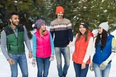 Inverno all'aperto di camminata di Forest Happy Smiling Young Friends della neve del gruppo della gente Fotografia Stock Libera da Diritti