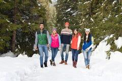 Inverno all'aperto di camminata di Forest Happy Smiling Young Friends della neve del gruppo della gente Fotografie Stock Libere da Diritti