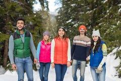 Inverno all'aperto di camminata di Forest Happy Smiling Young Friends della neve del gruppo della gente Immagine Stock Libera da Diritti