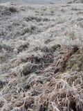 Inverno alla valletta Garry, Scozia Fotografia Stock
