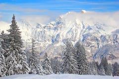 Inverno in alpi Immagine Stock