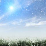Inverno in anticipo sul prato Fotografia Stock
