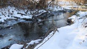inverno atrasado da água de fluxo do rio da floresta uma paisagem derretida do gelo da natureza, chegada da mola Fotografia de Stock