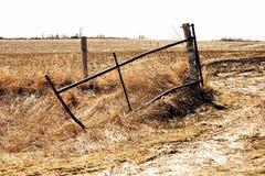 inverno atrasado na exploração agrícola Imagem de Stock