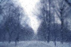 Inverno attraverso vetro Fotografie Stock Libere da Diritti
