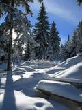 Inverno in Austria fotografia stock libera da diritti
