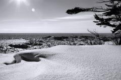Inverno B & W do superior de lago Imagens de Stock Royalty Free