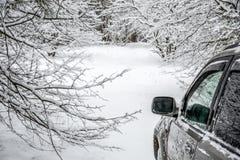 Inverno Backroad fotos de stock