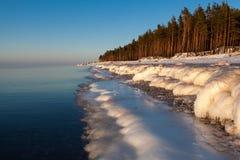 Inverno Baltico Fotografie Stock Libere da Diritti