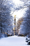 Inverno a Berlino Fotografie Stock