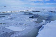 Inverno, bocca del fiume Platte Fotografia Stock Libera da Diritti