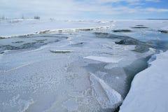 Inverno, bocca del fiume Platte Fotografie Stock