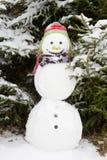 Inverno - boneco de neve em uma paisagem nevado com um chapéu Foto de Stock Royalty Free