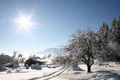 Inverno bonito Imagem de Stock