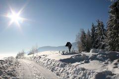 Inverno bonito Fotografia de Stock Royalty Free