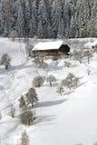 Inverno bonito Fotografia de Stock