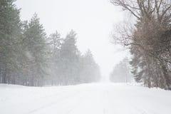 inverno bonito gelado e da neve da estação na estrada no país Fotos de Stock