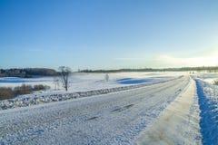 inverno branco, névoa e árvores Manhã silenciosa e ensolarada 2012 Fotografia de Stock