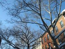 Inverno a Brooklyn Fotografie Stock Libere da Diritti