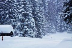 Inverno, bufera di neve sulle alpi austriache Immagini Stock Libere da Diritti