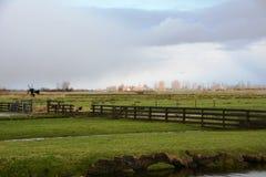 inverno-céu sobre De Zaanse Schans na Holanda Imagens de Stock