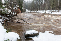 inverno cênico rio colorido no país Imagem de Stock