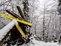 Inverno caduto dei segnali di direzione dentro fotografia stock libera da diritti