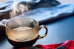 Inverno caldo Autumn Time New Year del vapore della tazza di tè Immagini Stock