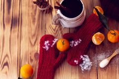Inverno caldo con i guanti, il tè ed i mandarini Fotografia Stock Libera da Diritti